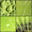 Green color samples collage — Stock Photo #64873841