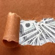 Dollars through torn craft paper — Stock Photo #64873941