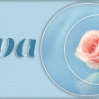 Floating pink rose in light blue water — Stock Photo #65010783