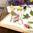 Composition with flowers and dry up plants on notebooks on table close up — Stock Photo #65011433