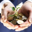 Handful of coins with growing sprout, closeup view — Stock Photo #65019701