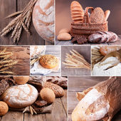 Wheat and bread collage — Stock Photo