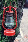 Kerosene lamp on tree, outdoors — Stock Photo