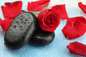 Spa stones and rose petals on colorful background — Fotografia Stock