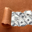 Dollars through torn craft paper — Stock Photo #65261093