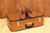 Retro suitcase with male shoes on fur carpet and background — Foto Stock