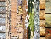 Assortment of different textures in collage, mix of textures as background — 图库照片