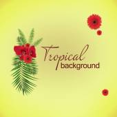 Space for your text near palm tree leaves and red flowers — Stock Photo