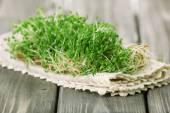 Fresh cress salad on wooden planks background — Stock Photo