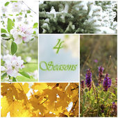 Four seasons collage with space for text: winter, spring, summer, autumn — Stock Photo