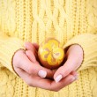 Female hands holding Easter egg, closeup view — Stock Photo #65653009