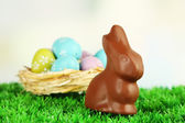 Easter composition with chocolate rabbit on green grass — Stock Photo