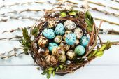 Bird eggs in nest on color wooden background — Stock Photo