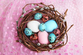 Bird colorful eggs in nest on bright background — Stockfoto