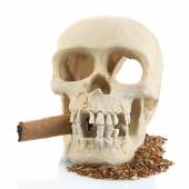 Smoking human scull with cigar in his mouth, isolated on white — Stock Photo