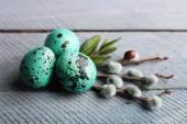 Bird colorful eggs — Stok fotoğraf