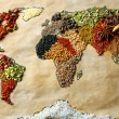 Map of world made from different kinds of spices, close-up — Stock Photo #66903255