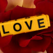 Decorative letters forming word LOVE on petals of roses background — Stock Photo #67007713