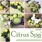 Green spa compositions in collage — Stock Photo