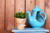 Dekoratif tencere ve masa üstü ahşap plakalar arka plan üzerinde üzerinde bitki ile iç tasarım — Stok fotoğraf