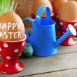 Fresh green grass in small metal bucket and Easter eggs in holders, on wooden background — Stock Photo #67279695