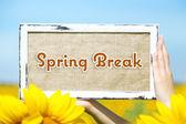 Spring break concept — Stock Photo