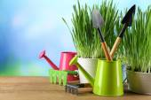 Fresh green grass in small metal buckets, watering can and garden tools on wooden table, on bright background — Stock Photo