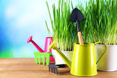 Fresh green grass in small metal buckets, watering can and garden tools on wooden table, on bright background — Photo