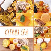 Orange spa compositions in collage — ストック写真