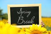 Spring break concept. Blackboard in hands on sunflower field background — Stock Photo