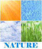 Voda, rostliny, nebe a slunce v koláž, přírodní složky koncept — Stock fotografie