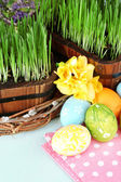 Easter eggs and green grass close-up — Stock Photo