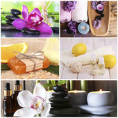 Aroma, aromatherapy, aromatic, background, bamboo, beauty, bloom, calmness, citrus, collage, collection, color, colorful, composition, concept, dayspa, flora, flower, fragrant, fresh, green, harmony,  — Stock Photo