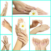 Hands with french manicure isolated on white in collage — Stock Photo