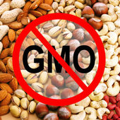 Assortment of tasty nuts without gmo — Stock Photo