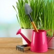 Fresh green grass in small metal buckets, watering can and garden tools on wooden table, on bright background — Stock Photo #68613445