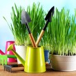 Fresh green grass in small metal buckets, watering can and garden tools on wooden table, on bright background — Stock Photo #68613461