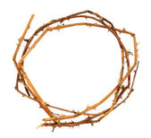 Crown of thorns, isolated on white — Stock Photo