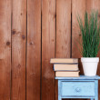 Interior design with plant and stack of books on tabletop on wooden planks background — Stock Photo #68728995