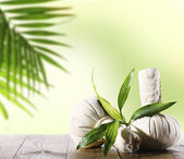 Spa compress balls with leaves on light green background — Stock Photo