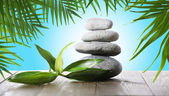 Stack of spa stones with green leaves on blue background — Stock Photo