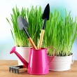 Fresh green grass in small metal buckets, watering can and garden tools on wooden table, on bright background — Stock Photo #68849115