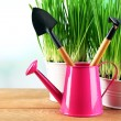 Fresh green grass in small metal buckets, watering can and garden tools on wooden table, on bright background — Stock Photo #68849125
