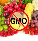 Fresh vegetables and fruits without gmo — Stock Photo