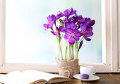 Purple crocus on windowsill background — Stock Photo
