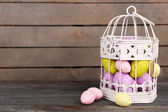 Ovos de Páscoa em gaiola decorativa — Fotografia Stock