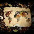 Map of world made from different kinds of spices on wooden background — Stock Photo #69297413