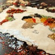 Map of world made from different kinds of spices on wooden background — Stock Photo #69297447