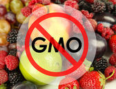 Juicy fruits and berries without gmo — Stock Photo