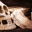 Still life with human skull, retro book and quill on wooden table, closeup — Stock Photo #69481471
